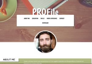 Online Profile Website